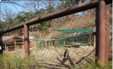 [청주동물원 순차적 단장..올해만 11억 원 투입] 뉴스 이미지